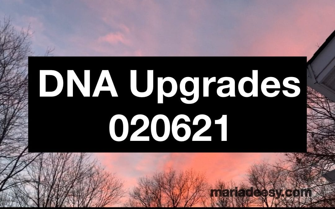 DNA Upgrades 020521