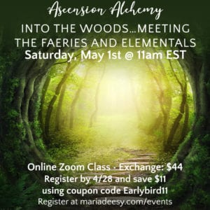 Into the Woods… meeting the Faeries and Elementals
